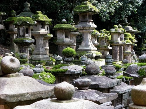 Moss covered stone lanterns in Nara's Kasuga Taisha Shinto Shrine